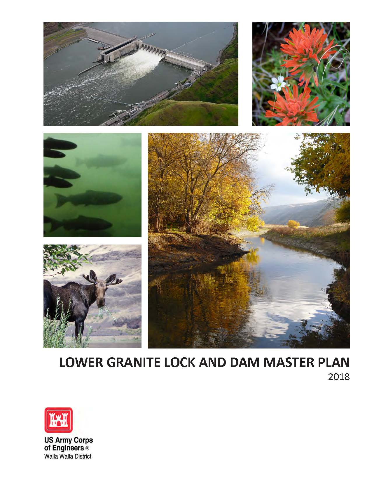 2018 Revised Lower Granite Master Plan Cover