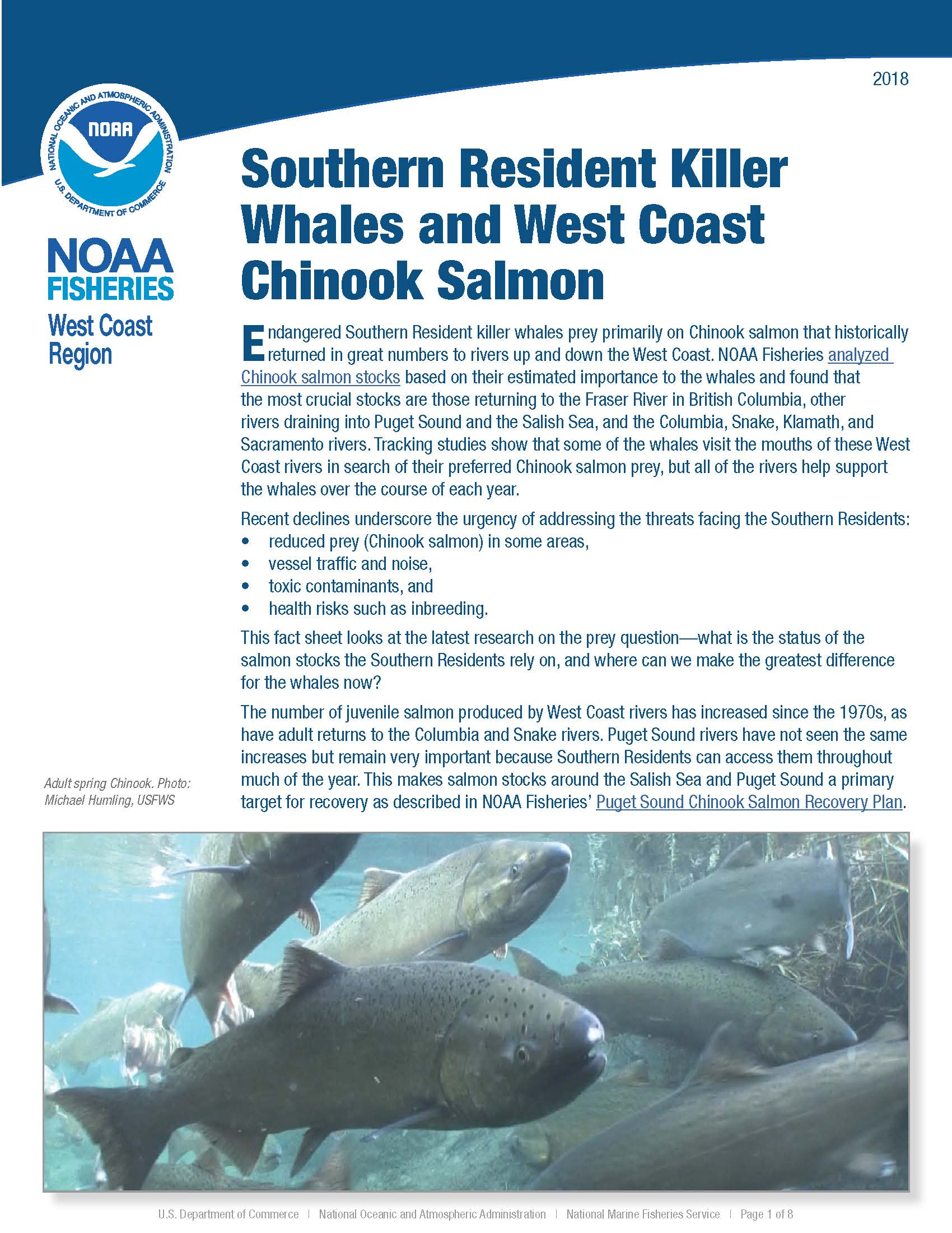 Southern Resident Killer Whales and West Coast Chinook Salmon